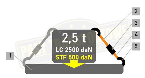 Pas ERGO 2,5t z napinaczem 500daN - mocowanie proste