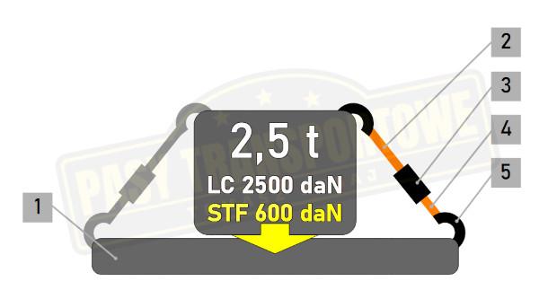 Pas ERGO 2,5t z napinaczem 600daN - mocowanie proste