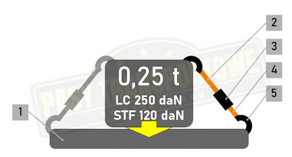 Pas ROLLO samozwijający z napinaczem 0,25 tony - 25 mm